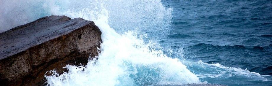 Nuestra Pasión es el mar